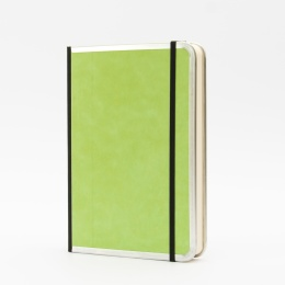 Notizbuch BASIC COLOUR grün | DIN A 5, 144 Blatt blanko