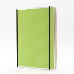 Notizbuch BASIC COLOUR grün | DIN A 4, 96 Blatt blanko