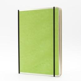 Notizbuch BASIC COLOUR grün | DIN A 4, 96 Blatt Punktraster