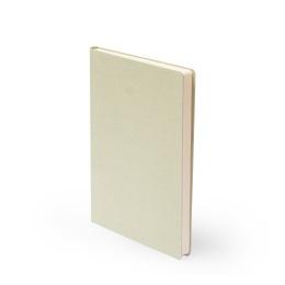 Notizbuch LEINEN blassgrün | DIN A 5, 96 Blatt liniert