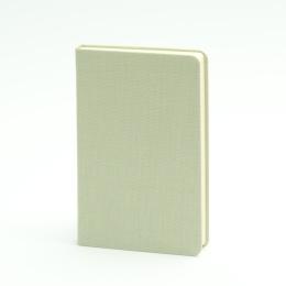 Notizbuch LEINEN blassgrün | 9 x 14 cm, 96 Blatt Punktraster